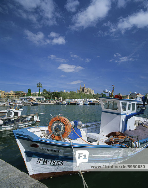 Fishing boat and the cathedral of Palma in the background  on Majorca  Balearic Islands  Spain  Mediterranean  Europe