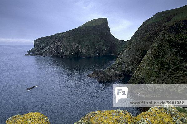 Wo Schafe in der Vergangenheit  Fair Isle  Shetland Islands  Schottland  Vereinigtes Königreich  Europa beweidet wurden Schafe-Rock