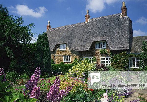 Thatched cottages with gardens full of summer flowers in Hampshire  England  United Kingdom  Europe