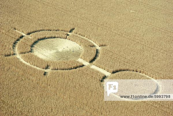 Luftaufnahme der Kornkreise in einem Feld  Wiltshire  England  Vereinigtes Königreich  Europa  Weizen