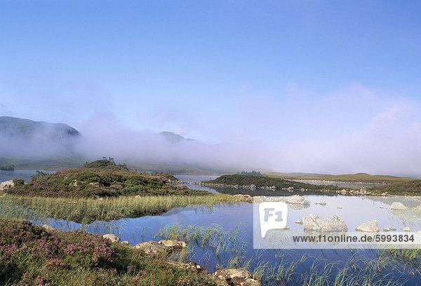 Lochan Na h-Achlaise  Rannoch Moor  Black Mount im Hintergrund  Highlands  Schottland  Vereinigtes Königreich  Europa
