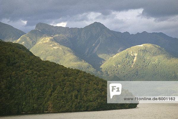 Mattes Sound  Fiordland  Southland  Südinsel  Neuseeland  Pazifik