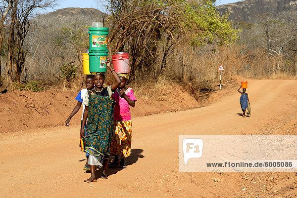 Frauen auf Feldweg tragen von Wasser auf Kopf  Tansania  Ostafrika  Afrika