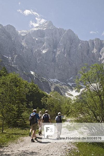 Reisegruppe im Sommer im Vrata-Tal in Richtung Berg Triglav  der höchste in Slowenien  Nationalpark Triglav  Julische Alpen  Mojstrana  Dolina  Slowenien  Europa