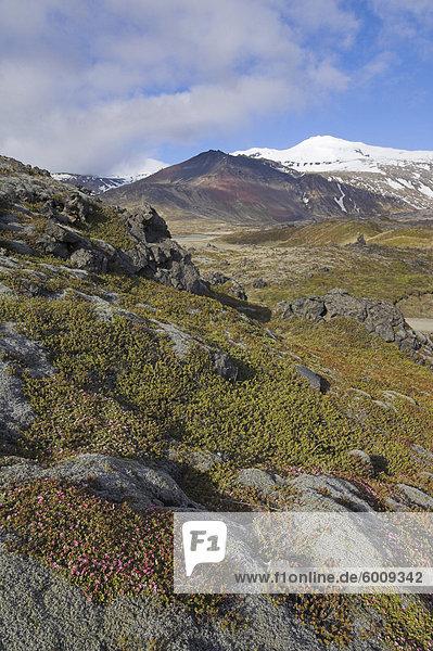 Moos bedeckte Lava Betten Surround Snaefellsjökull  ein aktiver Strato Vulkan begrenzt in Schnee und Eis  auf der Halbinsel Snaefellsnes  Nord-West Bereich  Island  Polarregionen