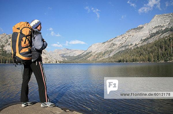 Ein Wanderer findet in den Blick auf die Ufer des Tenaya Lake  in den Tuolumne Meadows  in der Nähe von Tioga Pass und Yosemite Valley  Sierra Nevada  California  Vereinigte Staaten von Amerika  Nordamerika