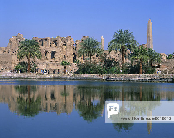 Reflections in the sacred lake of the temple  obelisks and palm trees at Karnak  near Luxor  Thebes  UNESCO World Heritage Site  Egypt  North Africa  Africa