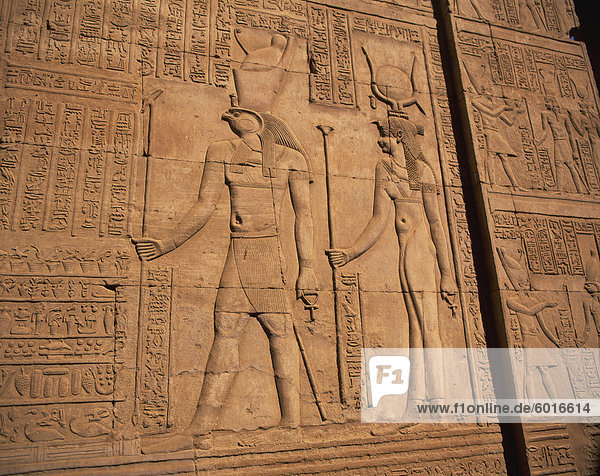Detail of relief carving including hieroglyphics  Kom Ombo  Egypt  North Africa  Africa  Africa