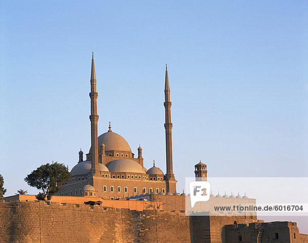 The Mohammed Ali Mosque at dawn  Cairo  Egypt  North Africa  Africa
