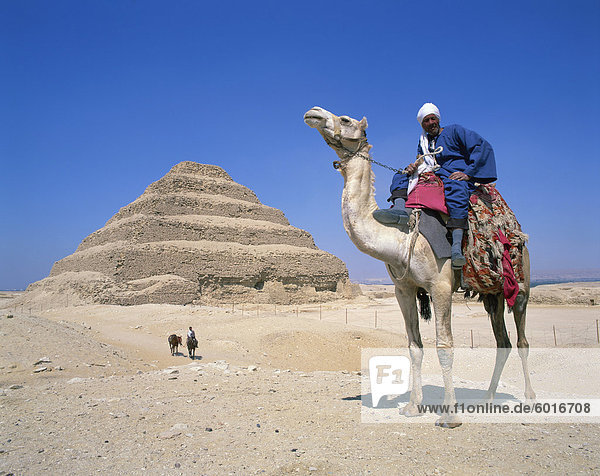 Guide on camel in front of the Step Pyramid of the pharaoh Zoser at Saqqara (Sakkara)  UNESCO World Heritage Site  Egypt  North Africa  Africa