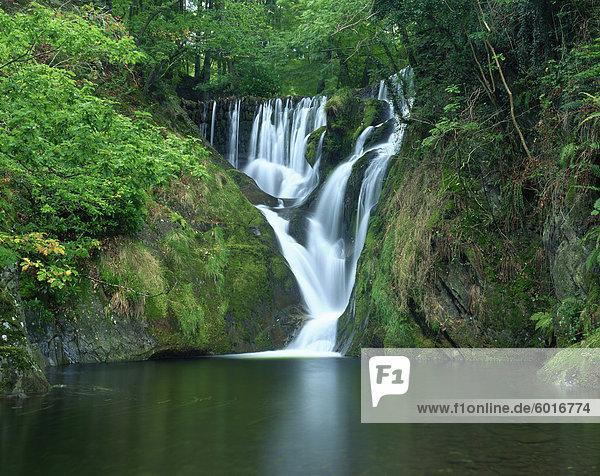 Furnace Falls and pool below  Furnace  Dyfed  Wales  United Kingdom  Europe