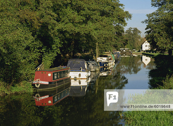 Moored boats on the Wey navigation from the south side of Craft Lock  Sutton Green  Surrey  England  United Kingdom  Europe
