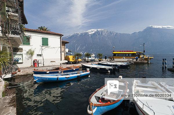Limone del Garda  Lake Garda  Lombardy  Italian Lakes  Italy  Europe