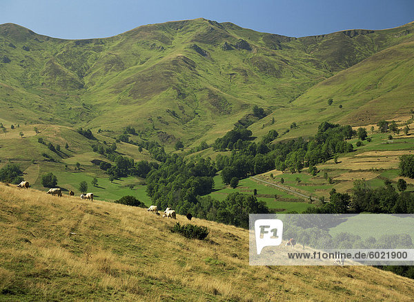 Landschaft bei Arreau  Midi-Pyrenees  Frankreich  Europa