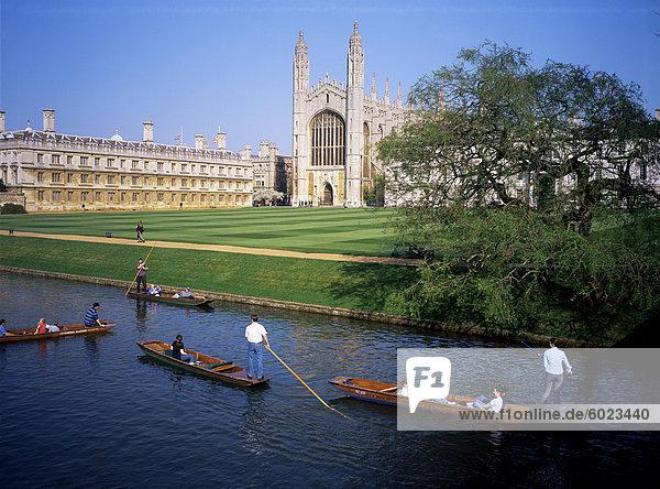 Kings College Chapel und Polyvletten auf den Rücken  Cambridge  Cambridgeshire  England  Vereinigtes Königreich  Europa