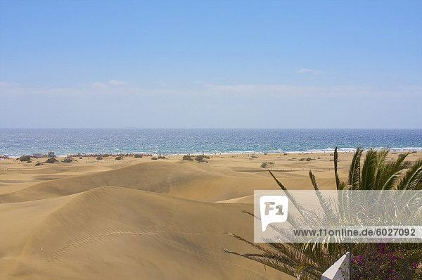 Dünen von Maspalomas,  Gran Canaria,  Kanarische Inseln,  Spanien,  Europa