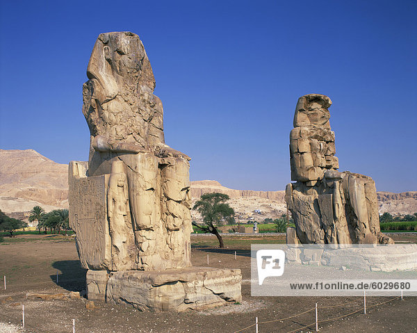 Statues of Amenhotep or Amenophis III known as the Colossi of Memnon at Thebes  UNESCO World Heritage Site  Egypt  North Africa  Africa