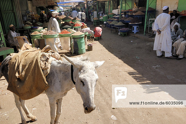 Souk  Omdurman  Sudan  Afrika