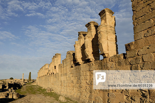 Skyrota  Kyrene  UNESCO World Heritage Site  Libyen  Nordafrika  Afrika