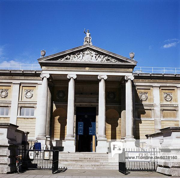Ashmolean Museum  Oxford  Oxfordshire  England  Vereinigtes Königreich  Europa
