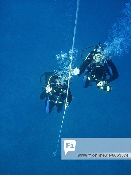 Unterwasseraufnahme 2 Taucher