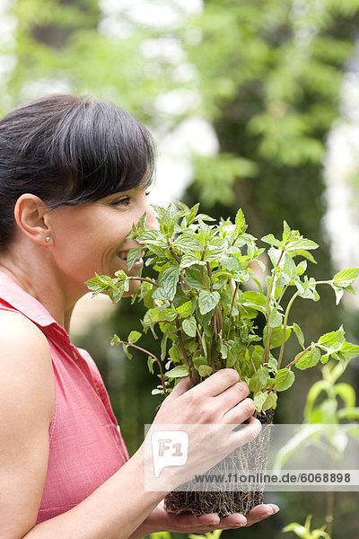 Frau riechen frischen Minze
