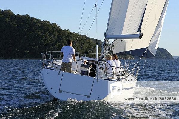 Yacht  Kreuzfahrtschiff  Australien  North Shore  Sydney