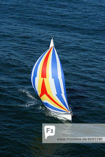 Segeln  Farbaufnahme  Farbe  Yacht  Ansicht  Kreuzfahrtschiff  Luftbild  Fernsehantenne  Australien  North Shore  Spinnaker  Sydney