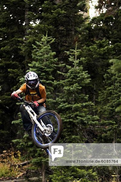 Berg  folgen  absteigen  Downhill mountain biking  Wyoming