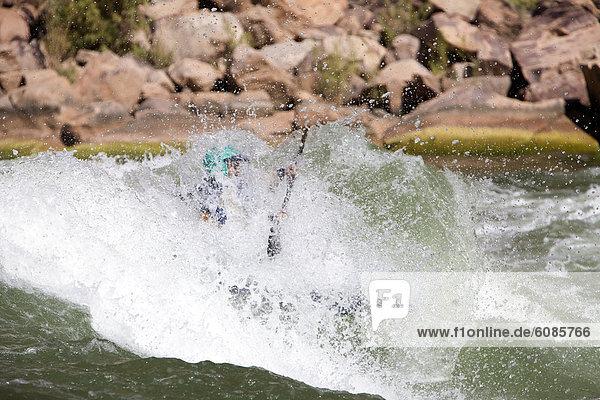 Wasser  Reise  Ehrfurcht  Fluss  groß  großes  großer  große  großen  Paddel  Kajakfahrer  Schlucht  Colorado