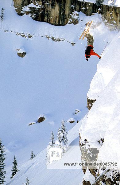 Skifahrer  Steilküste  Ehrfurcht  springen  Reh  Capreolus capreolus  Ländliches Motiv  ländliche Motive  Wyoming