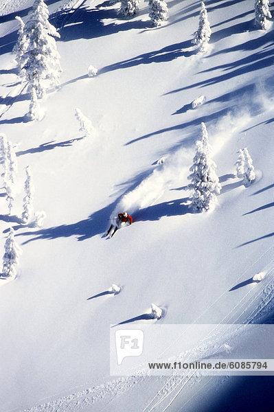 Skifahrer  Tag  liegend  liegen  liegt  liegendes  liegender  liegende  daliegen  drehen  Ehrfurcht  groß  großes  großer  große  großen  Gesichtspuder  Berghüttensänger  Sialia currucoides  Wyoming