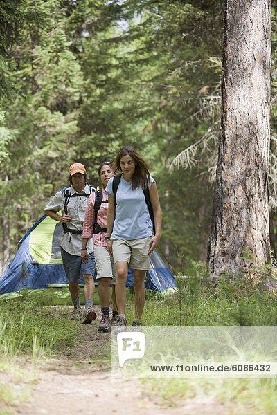 Laubwald  gehen  Fernverkehrsstraße  camping  schmutzig  20-30 Jahre  20 bis 30 Jahre  Twen