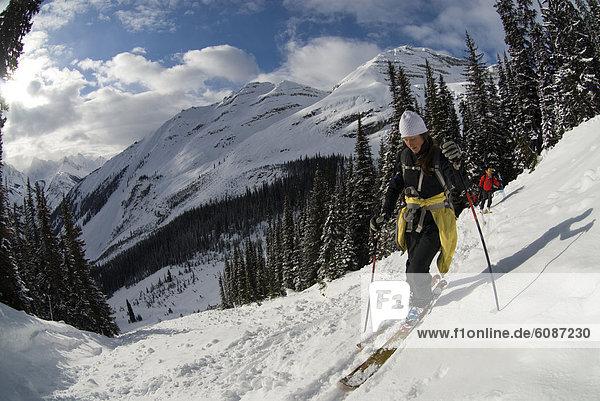 überqueren  Weg  unbewohnte  entlegene Gegend  Ski  Rocky Mountains  Lawine  kanadisch  Kreuz