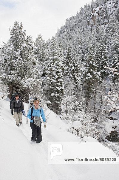 Gabel  Diamant  Schnee  Utah