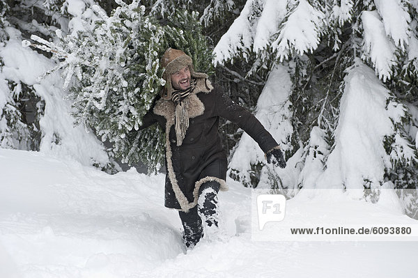 Österreich  Salzburger Land  reifer Mann mit Weihnachtsbaum  lächelnd