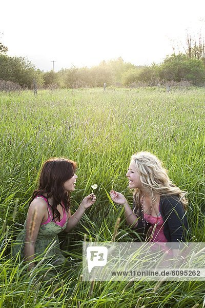 Girls sit and blow on dandelions in a grassy field in Sandpoint  Idaho.