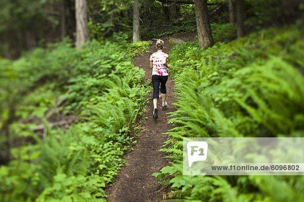 Frau  folgen  rennen  grün  Überfluss  Farn  Feld  jung