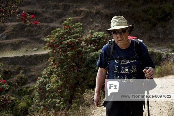 Biegung  Biegungen  Kurve  Kurven  gewölbt  Bogen  gebogen  Berg  gehen  Weg  Einsamkeit  Bergwanderer  Nepal