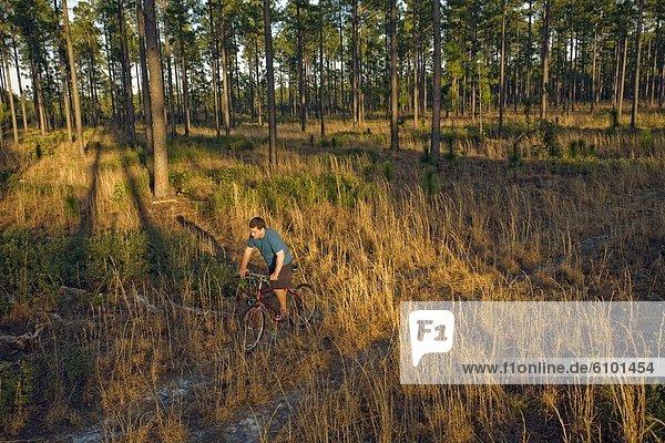 Anschnitt  Mann  folgen  grün  Fahrrad  Rad  North Carolina  Sumpf