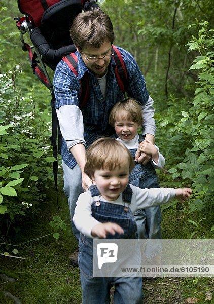 Laubwald  gehen  Bruder  Menschlicher Vater  folgen