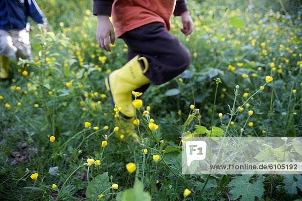 Blume  gehen  Junge - Person  ungestüm