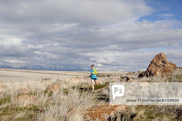folgen  rennen  Insel  Nachmittag  Antilope  Utah