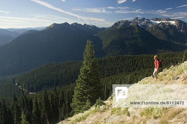 Mann  wandern  jung  Berg  Mount Rainier Nationalpark