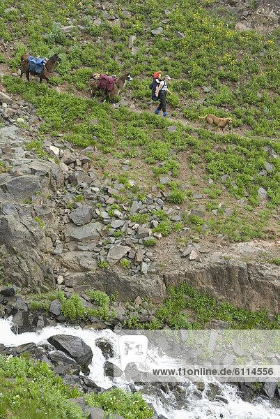 Frau  wandern  Colorado  San Juan National Forest