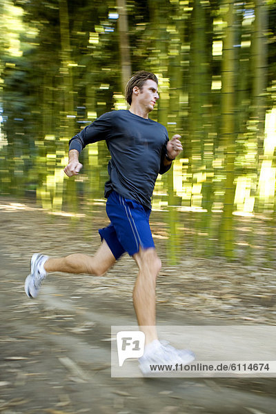 Laubwald  Mann  folgen  rennen