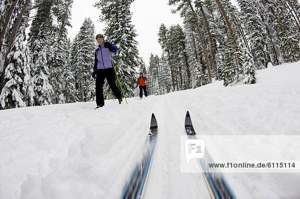 niedrig  Biegung  Biegungen  Kurve  Kurven  gewölbt  Bogen  gebogen  überqueren  Frau  folgen  Skisport  Ski  Ansicht  2  jung  Flachwinkelansicht  Norden    Winkel  Kreuz  Oregon  Schnee
