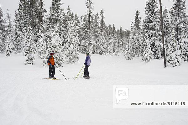 Biegung  Biegungen  Kurve  Kurven  gewölbt  Bogen  gebogen  überqueren  Frau  sprechen  bedecken  folgen  2  jung  Kreuz  Oregon  Schnee