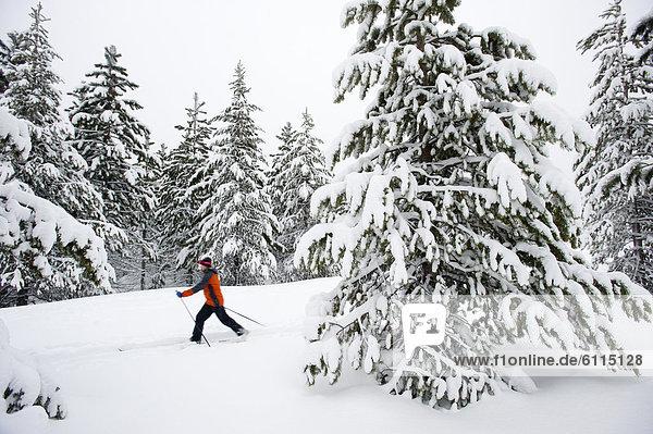 Biegung  Biegungen  Kurve  Kurven  gewölbt  Bogen  gebogen  überqueren  Frau  folgen  jung  1  Kreuz  Schnee