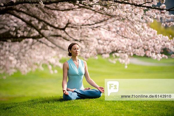 Frau in Lotusstellung unter Kirschbaum